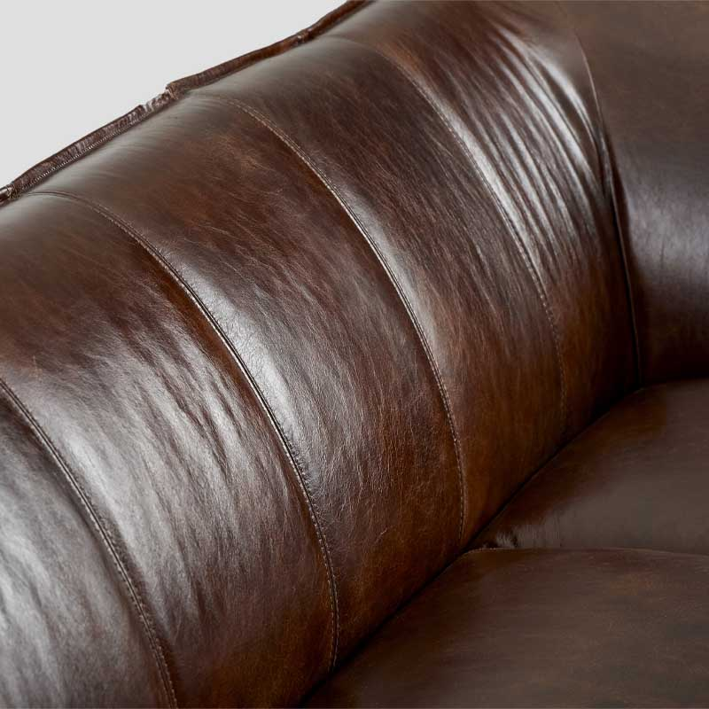 Dialma Brown Sofa DB005768
